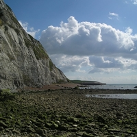 Abbot's Cliff Beach